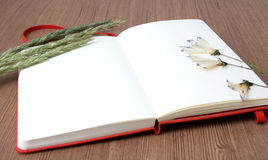 Notebook with Dry Flowers. Open Notebook with Dry Flowers Royalty Free Stock Photo