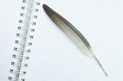 Notebook and feather Stock Photography