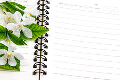 Notebook and flower. With blank space for write something Royalty Free Stock Photo