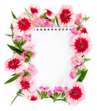 Notebook with flowers pink carnation on white background. Stock Photography