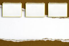 Notebook frame on a white background Royalty Free Stock Images