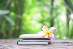 Notebook and Frangipani flower on wooden table Stock Photo