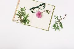 Notebook,glasses and flower.flat lay.white background.copy space. Blogger concept Royalty Free Stock Photography