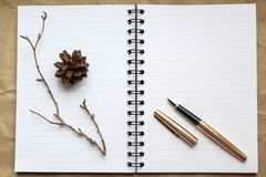Notebook, gold pen and concert on the desk, dry cones and branches decorated table royalty free stock images