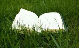 Notebook on grass Stock Photos