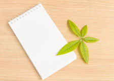 Notebook and green leaf Stock Image
