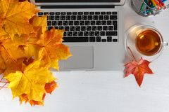 Notebook, laptop, flowers and autumn leaves. Top view on white background. Autumn flat lay. Mock up for art work with workplace Stock Images