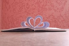 Opened blank decorative notebook on pink background royalty free stock images