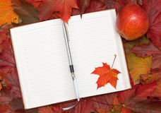 Notebook and maple leaves Royalty Free Stock Photography