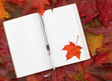 Notebook and maple leaves Stock Photography