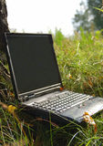 Notebook outdoors at grass. Notebook outdoors in forest at grass Royalty Free Stock Images