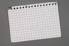 Notebook page. Empty page alienated from checked notebook attached to the grey board Royalty Free Stock Photo