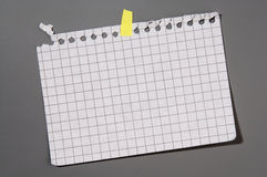 Notebook page. Empty page alienated from checked notebook attached to the grey board Royalty Free Stock Photography