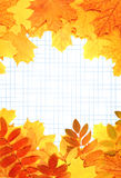 Notebook pages and autumn leaves Stock Photography