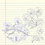Notebook  with pansies and bindweed Royalty Free Stock Image