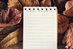 Notebook paper or note pad with dry leaf in nature background Royalty Free Stock Photos