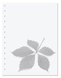 Notebook paper with virginia creeper leaf royalty free stock image