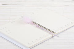 Notebook and pen. Notebook agenda and funny pen stock image