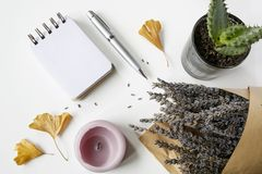 Notebook, pen, candles, ginkgo leaves, lavender, cactus on white. Table, flat lay composition royalty free stock photo