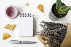 Notebook, pen, candles, ginkgo leaves, lavender, cactus on white. Table, flat lay composition stock images