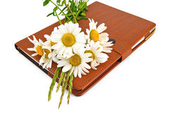 Notebook with pen and daisies Royalty Free Stock Photo