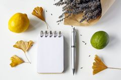 Notebook, pen, ginkgo leaves, lavender and citrus fruits on white. Table royalty free stock photography