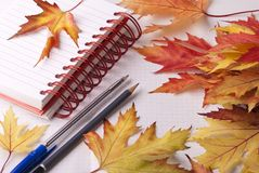Notebook, pen, pencil and leaves Royalty Free Stock Photos