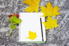 Notebook with pencil in autumn royalty free stock images