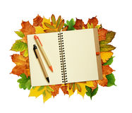 Notebook and pens on dry autumn leaves Royalty Free Stock Photography