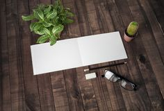 Notebook, plants and stationery stock photos