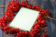 Notebook for recipes with a viburnum Stock Photos