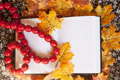 Notebook and red necklace on autumn leafs Stock Photography