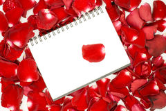 Notebook on red rose petals. Background Stock Photography