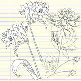 Notebook set with peony and freesia Royalty Free Stock Photo