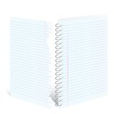 Notebook spiral Royalty Free Stock Image