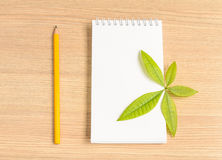 Notebook and wooden pencil and green leaf Stock Photography