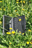 Notebook and yellow dandelion Royalty Free Stock Photo