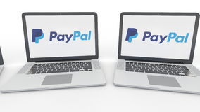 Notebooks with PayPal logo on the screen. Computer technology conceptual editorial 4K clip, seamless loop. Notebooks with PayPal logo on the screen. Computer stock video footage