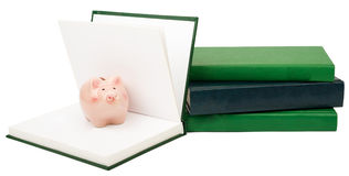 Notebooks with piggy bank Royalty Free Stock Photography