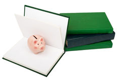 Notebooks with piggy bank Stock Photography