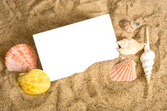 Notecard on Beach. A blank notecard surrounded by sea shells and sand with copy space Royalty Free Stock Photography