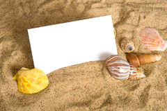 Notecard on Beach. A blank notecard surrounded by sea shells and sand with copy space Stock Image