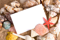 Notecard on Beach. A blank notecard surrounded by sea shells and sand on a sandy beach with copy space Stock Images
