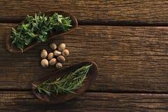 Notemuskaat en rozemarijnkruiden op een houten lijst stock afbeelding