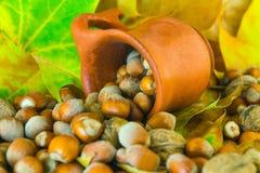 Noten die van ceramische pot worden gemorst Stock Foto