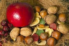 Noten en gedroogd fruit royalty-vrije stock afbeeldingen