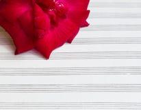 Noten für Liebeslied, mit Rose Stockfotos