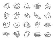 Noten, zaden en bonenpictogramreeks Inbegrepen pictogrammen als basilicum, thyme, gember, peper, peterselie, munt en meer Stock Foto