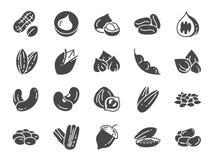 Noten, zaden en bonenpictogramreeks Inbegrepen pictogrammen als okkernoot, sesam, slabonen, koffie, amandel, pecannoot en meer Stock Foto