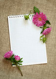 Notepad and asters Stock Photos